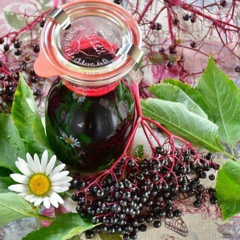 Elderberry Syrup; A Miracle Elixir!